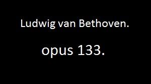 opus 133